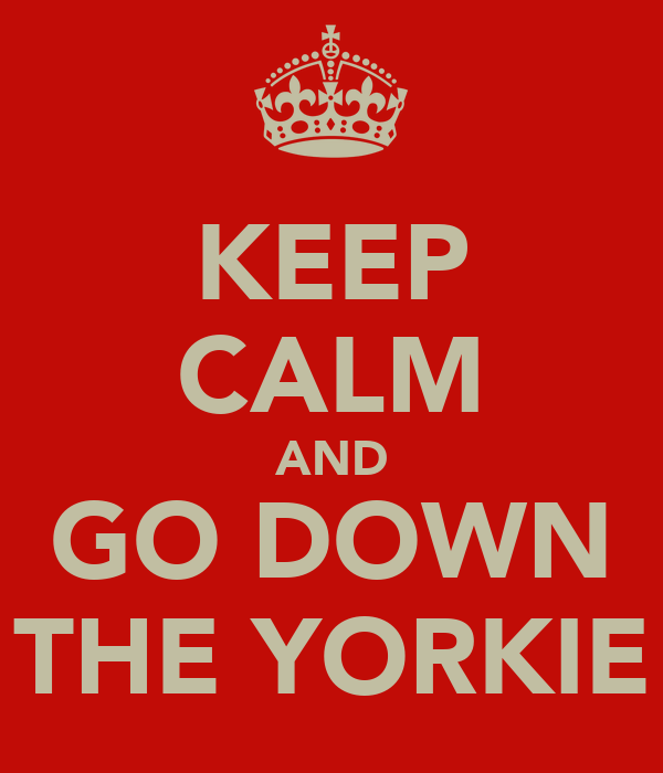 KEEP CALM AND GO DOWN THE YORKIE