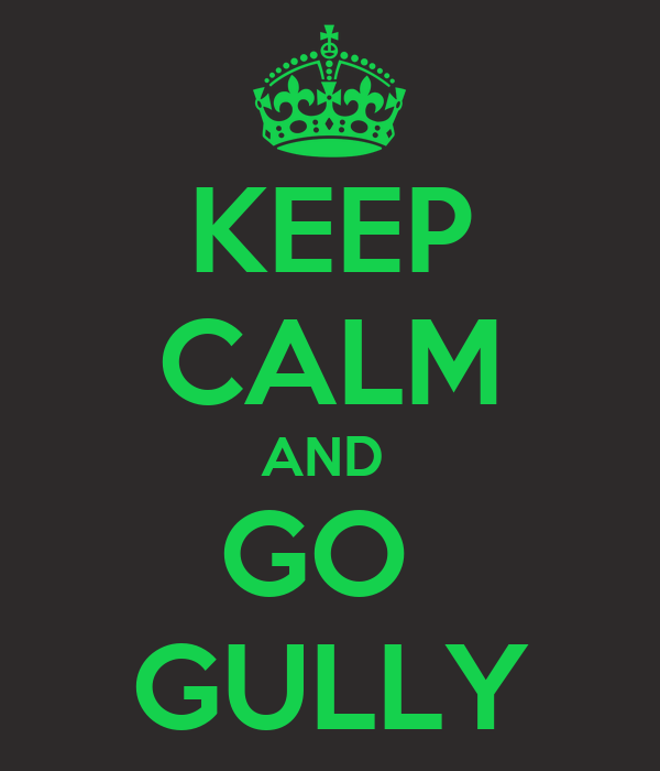 KEEP CALM AND  GO  GULLY