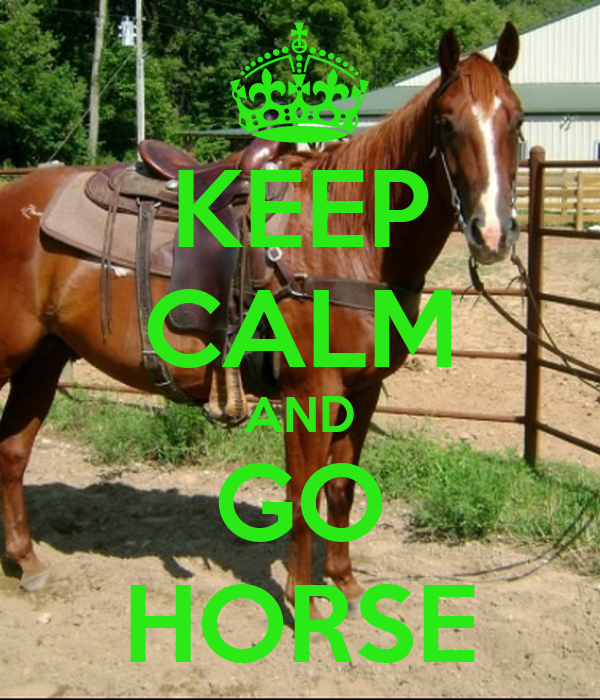 KEEP CALM AND GO HORSE