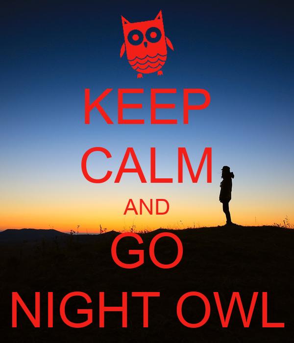 how to keep an owl