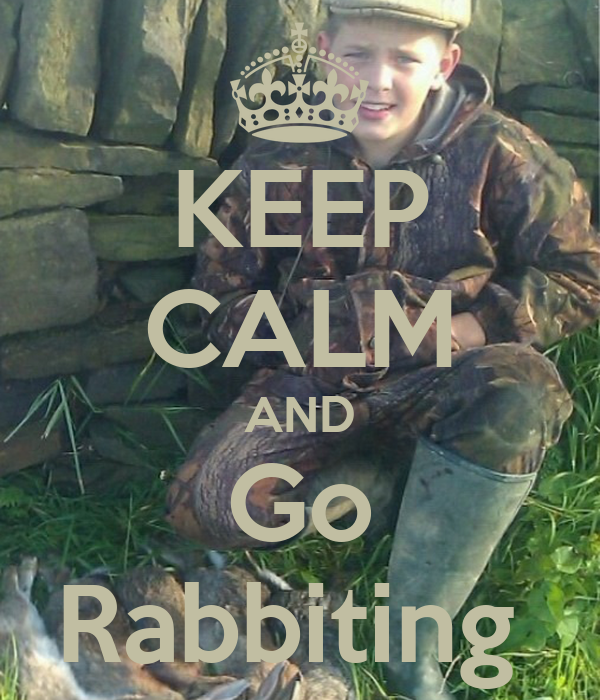 KEEP CALM AND Go Rabbiting