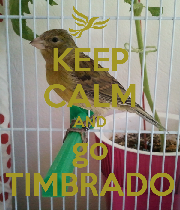KEEP CALM AND go TIMBRADO