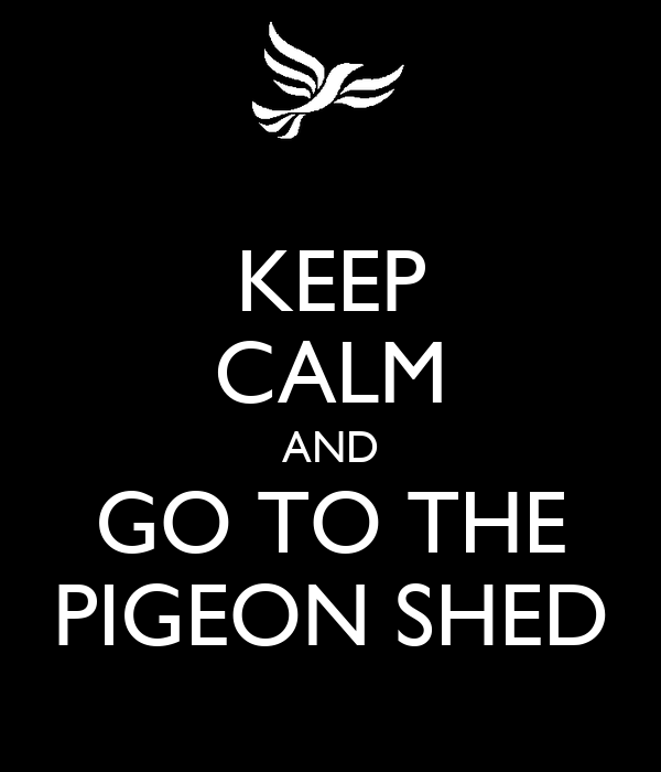 KEEP CALM AND GO TO THE PIGEON SHED