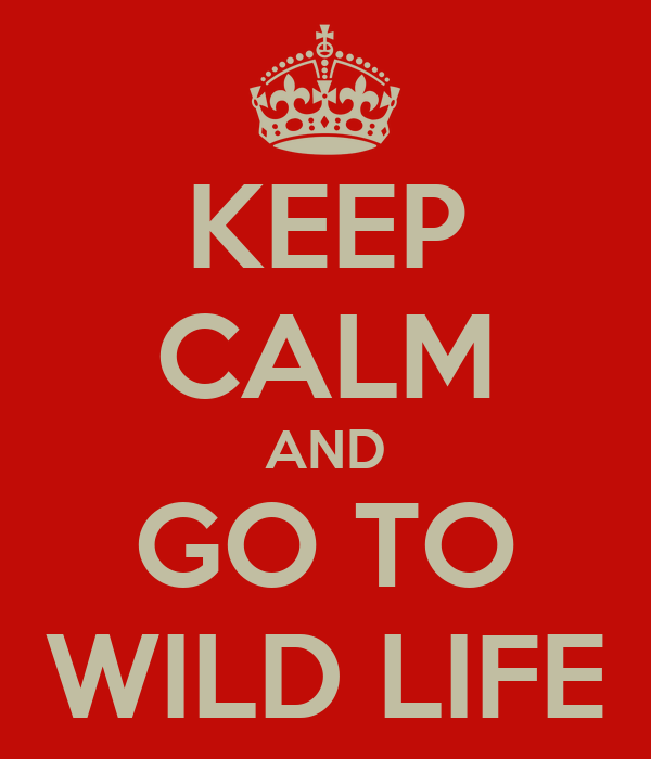KEEP CALM AND GO TO WILD LIFE