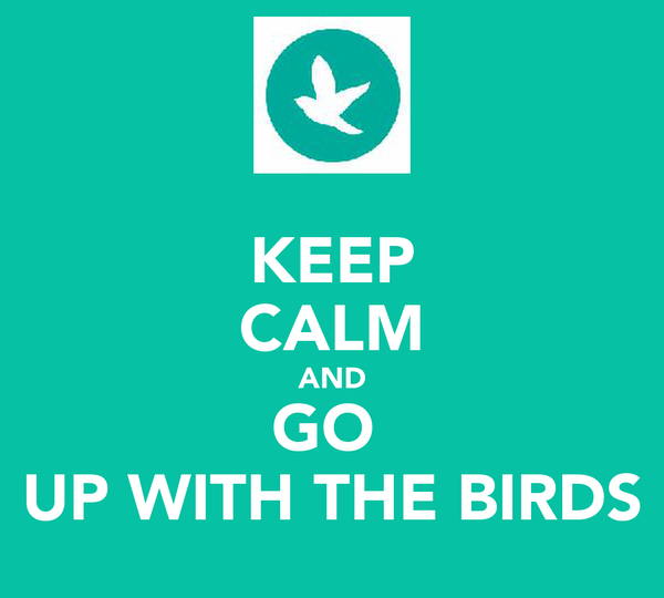 KEEP CALM AND GO  UP WITH THE BIRDS