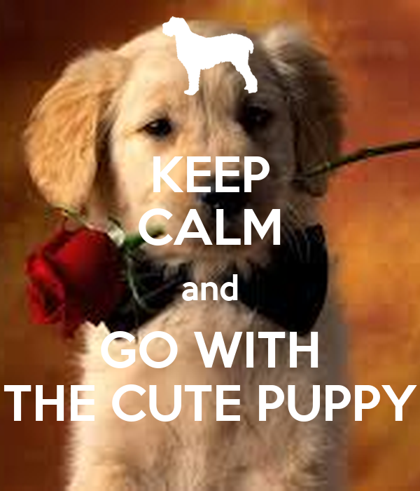 KEEP CALM and GO WITH THE CUTE PUPPY