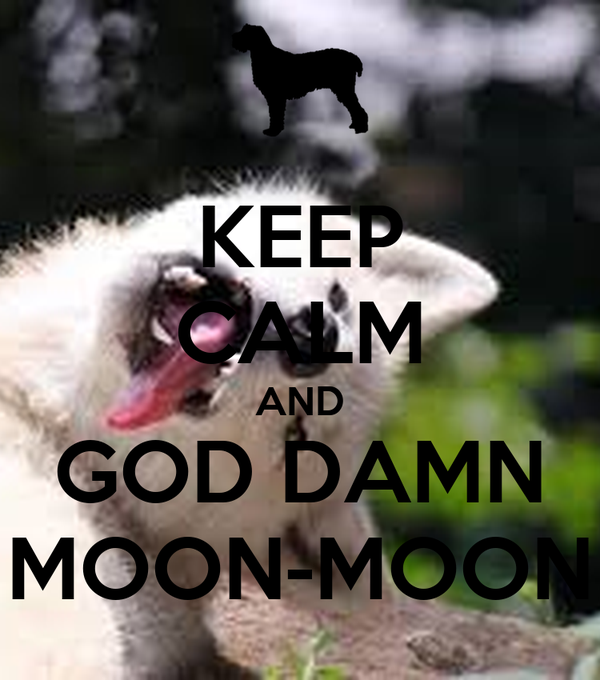 KEEP CALM AND GOD DAMN MOON-MOON