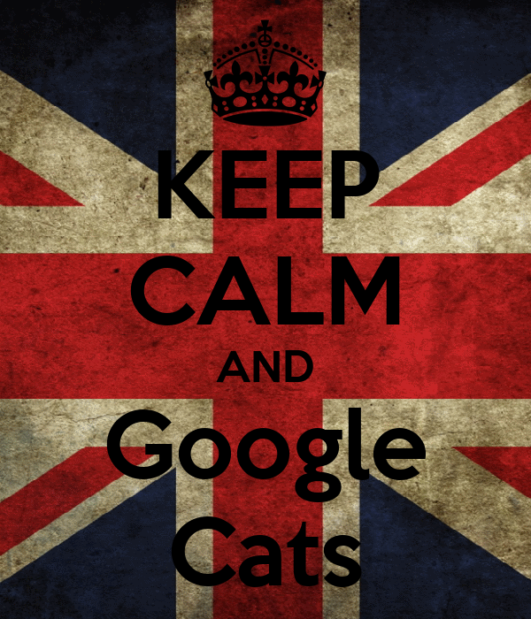 KEEP CALM AND Google Cats