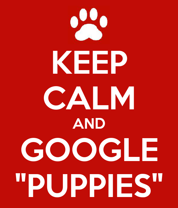 """KEEP CALM AND GOOGLE """"PUPPIES"""""""