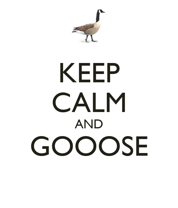 KEEP CALM AND GOOOSE