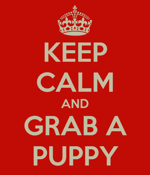 KEEP CALM AND GRAB A PUPPY