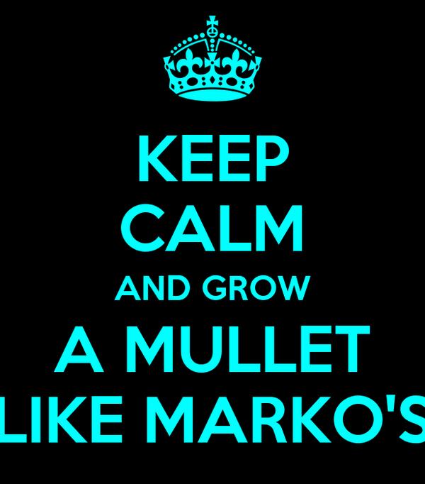 KEEP CALM AND GROW A MULLET LIKE MARKO'S