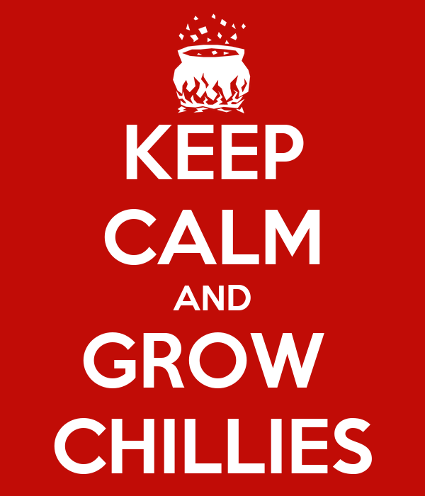 KEEP CALM AND GROW  CHILLIES