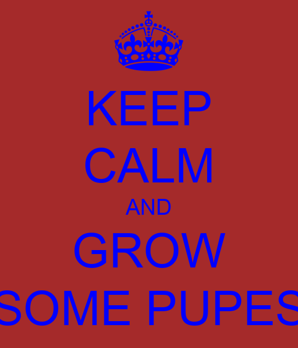 KEEP CALM AND GROW SOME PUPES