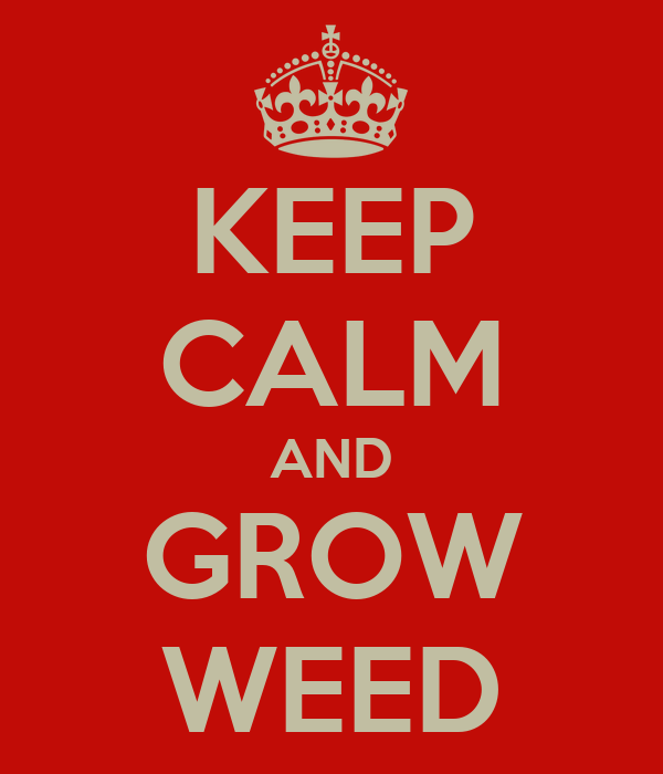 KEEP CALM AND GROW WEED