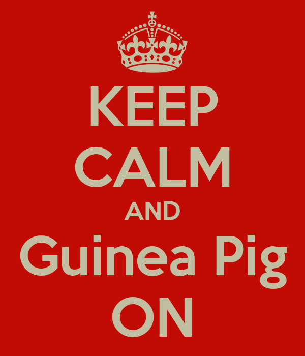 KEEP CALM AND Guinea Pig ON