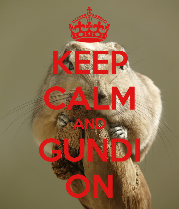 KEEP CALM AND GUNDI ON