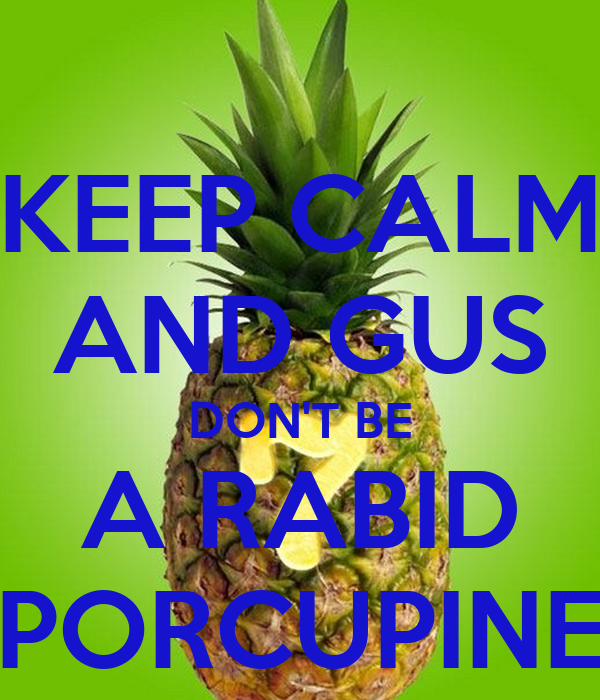 KEEP CALM AND GUS DON'T BE A RABID PORCUPINE