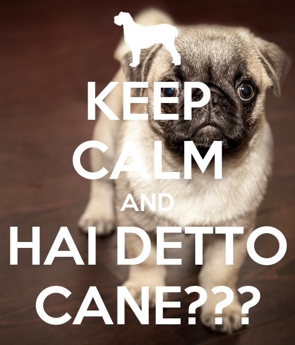 KEEP CALM AND HAI DETTO CANE???