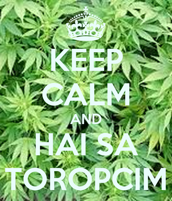 KEEP CALM AND HAI SA TOROPCIM