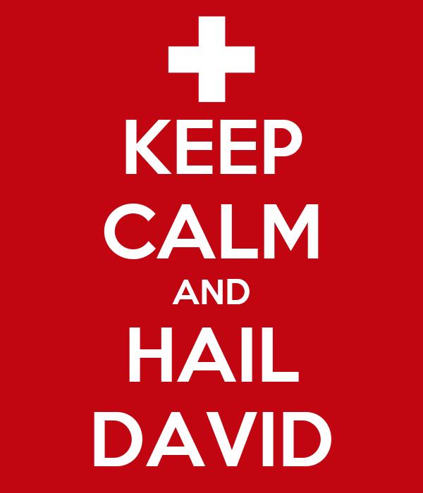 KEEP CALM AND HAIL DAVID
