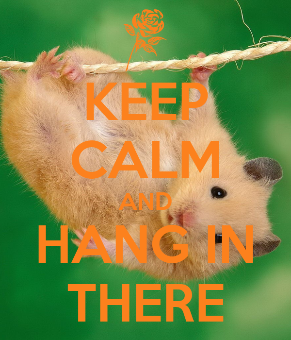 KEEP CALM AND HANG IN THERE