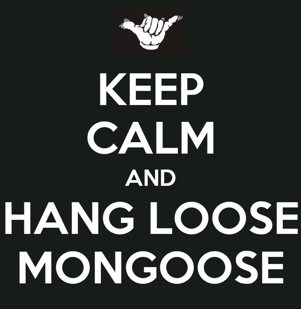 KEEP CALM AND HANG LOOSE MONGOOSE