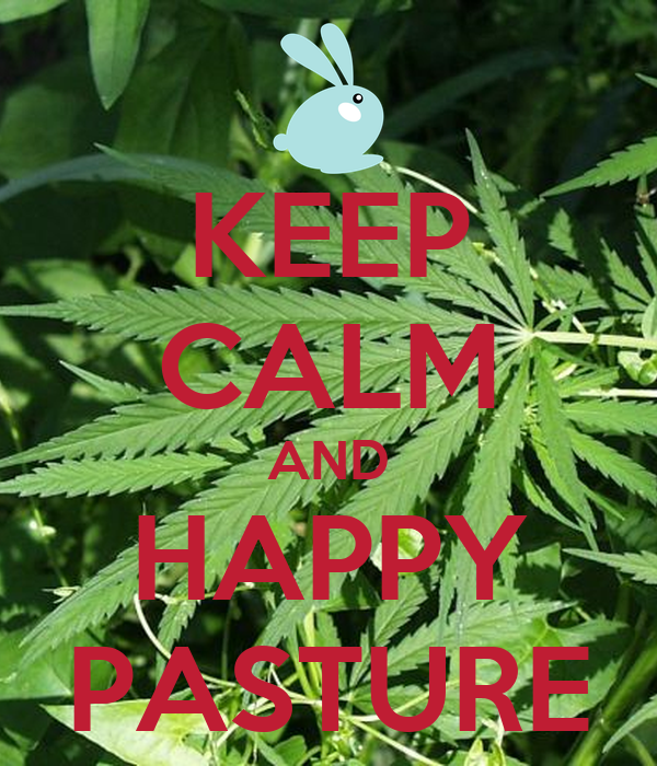 KEEP CALM AND HAPPY PASTURE