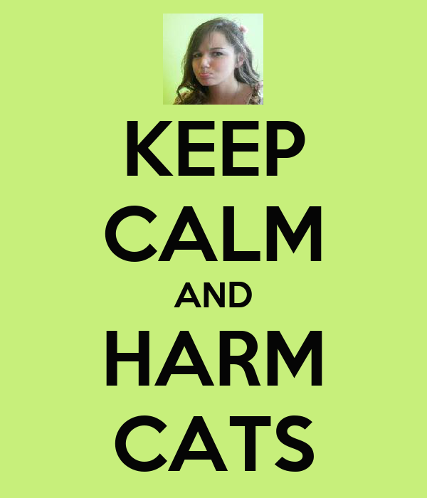 KEEP CALM AND HARM CATS