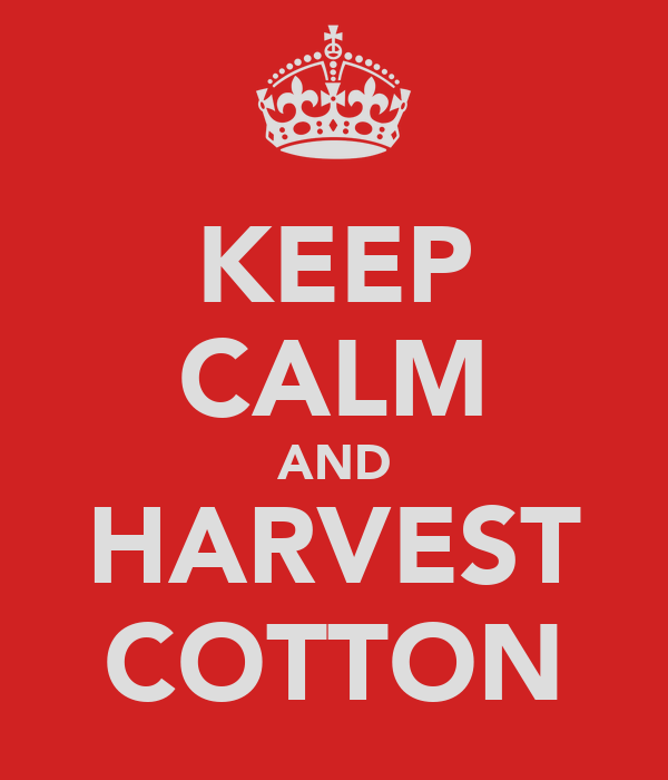 KEEP CALM AND HARVEST COTTON