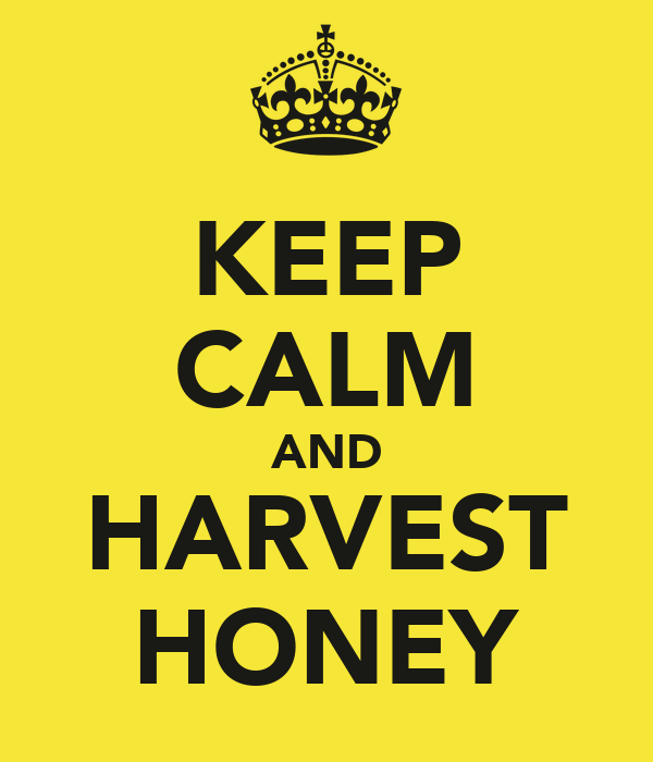 KEEP CALM AND HARVEST HONEY