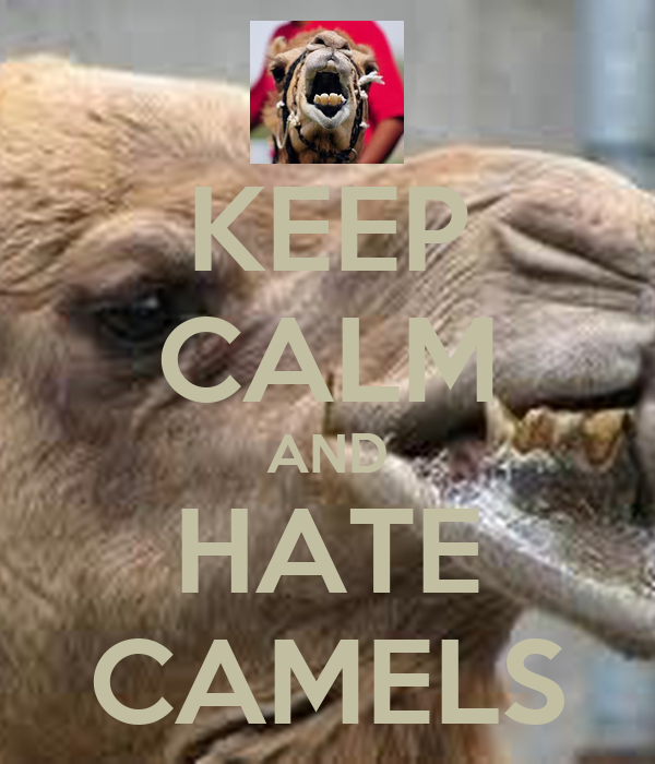 KEEP CALM AND HATE CAMELS