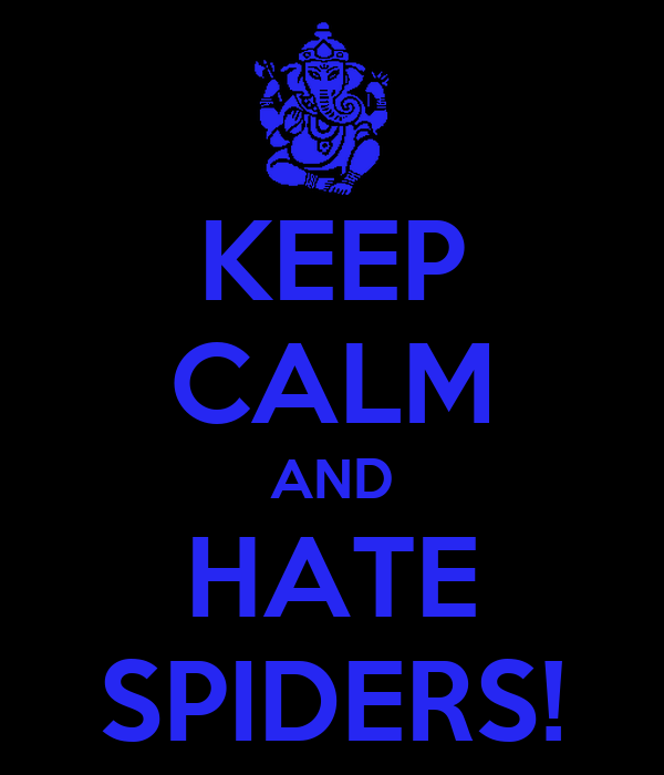 KEEP CALM AND HATE SPIDERS!
