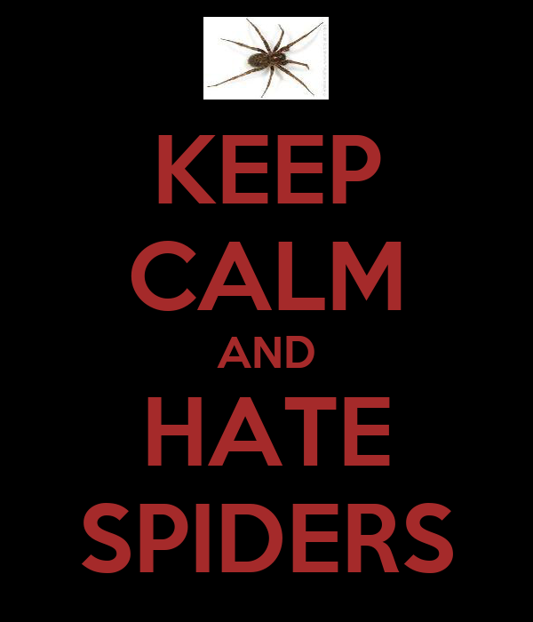 KEEP CALM AND HATE SPIDERS