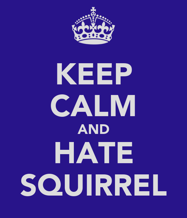 KEEP CALM AND HATE SQUIRREL