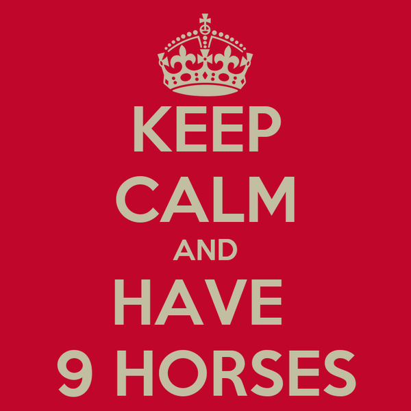 KEEP CALM AND HAVE  9 HORSES