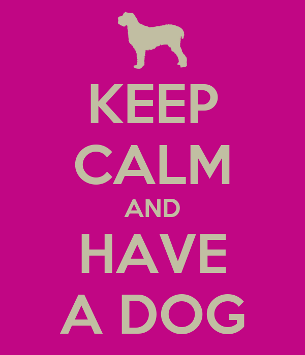 KEEP CALM AND HAVE A DOG