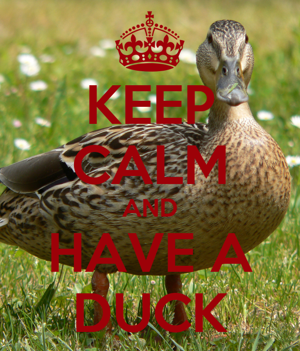 KEEP CALM AND HAVE A DUCK