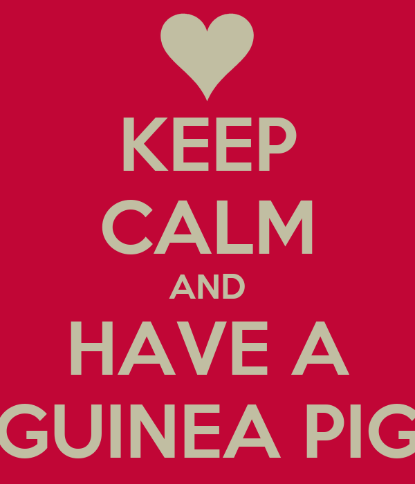 KEEP CALM AND HAVE A GUINEA PIG