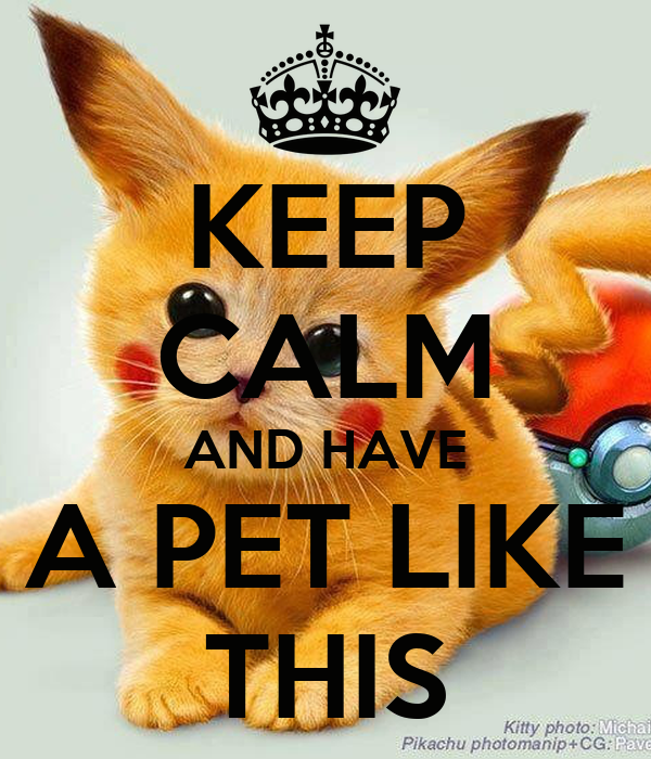KEEP CALM AND HAVE A PET LIKE THIS