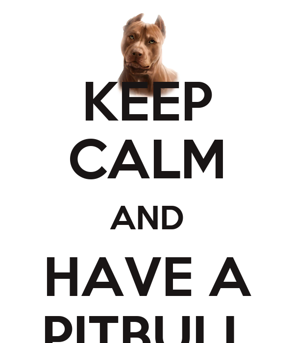 KEEP CALM AND HAVE A PITBULL