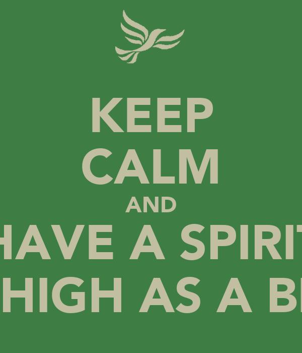 KEEP CALM AND HAVE A SPIRIT AS HIGH AS A BIRD