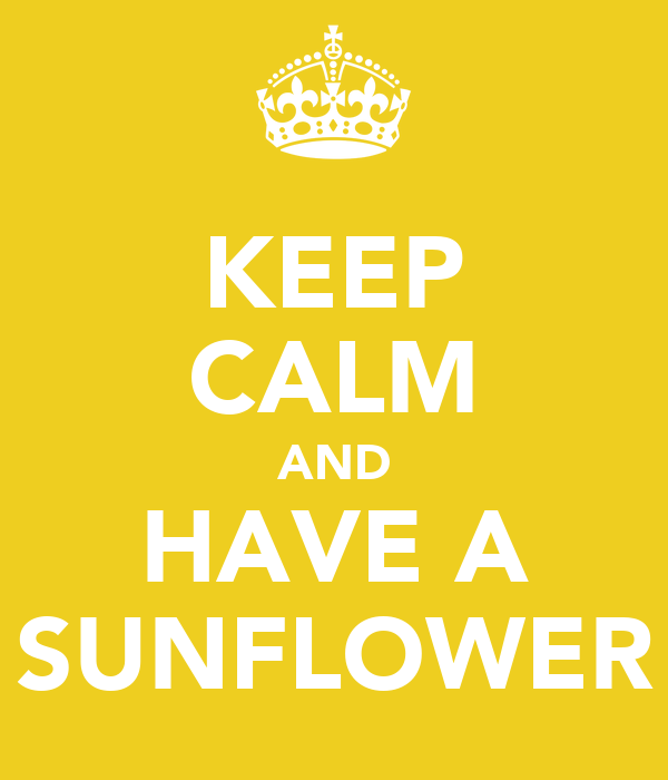 KEEP CALM AND HAVE A SUNFLOWER