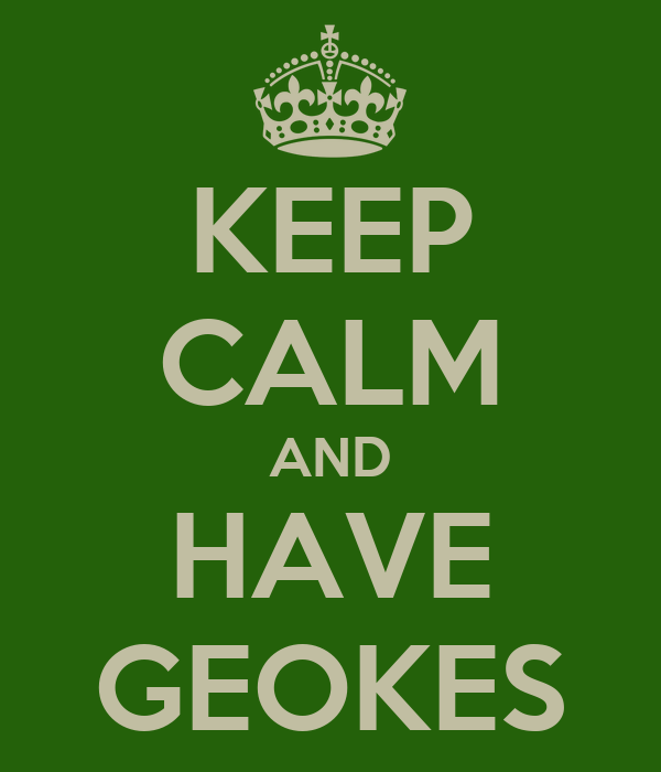 KEEP CALM AND HAVE GEOKES