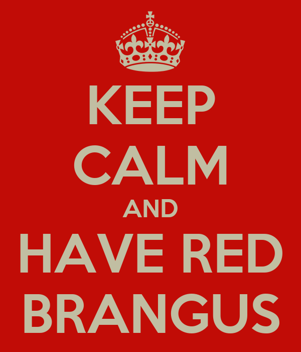 KEEP CALM AND HAVE RED BRANGUS