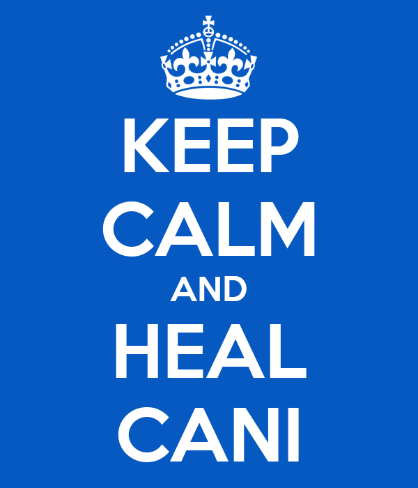 KEEP CALM AND HEAL CANI