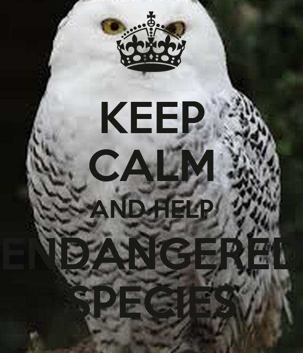KEEP CALM AND HELP ENDANGERED SPECIES