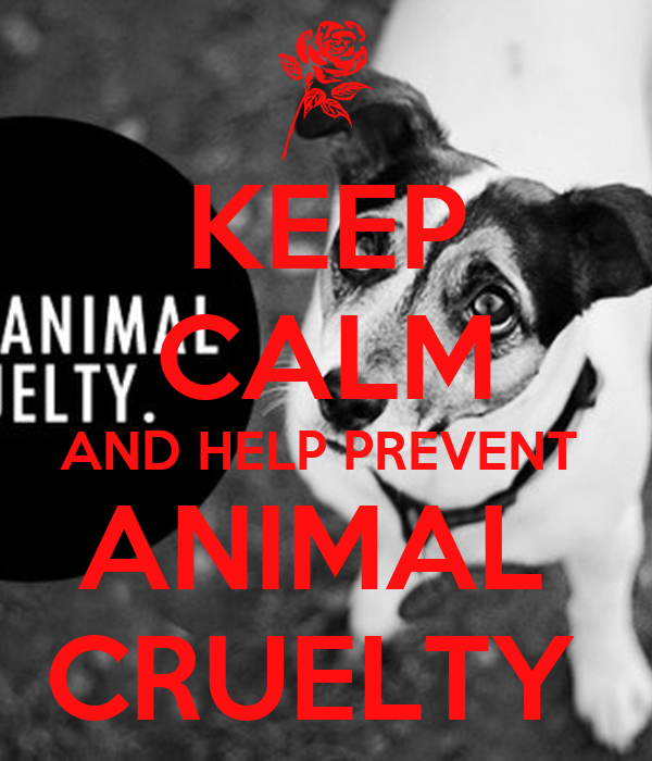 KEEP CALM AND HELP PREVENT  ANIMAL  CRUELTY