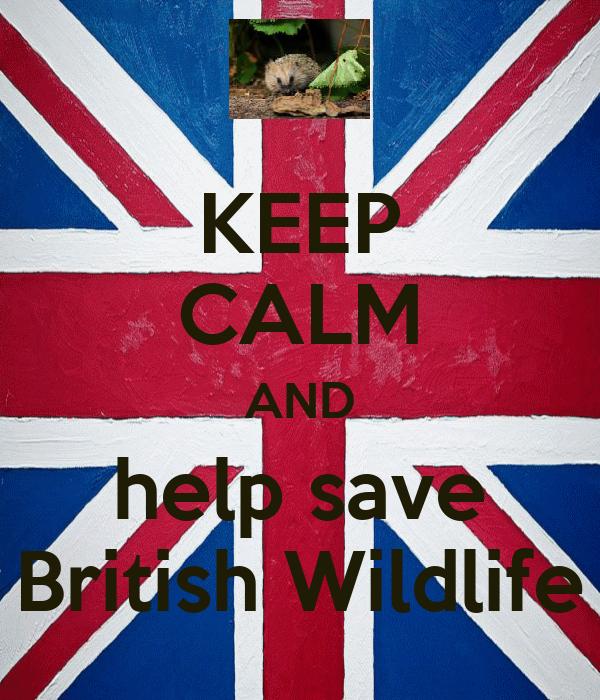 KEEP CALM AND help save British Wildlife