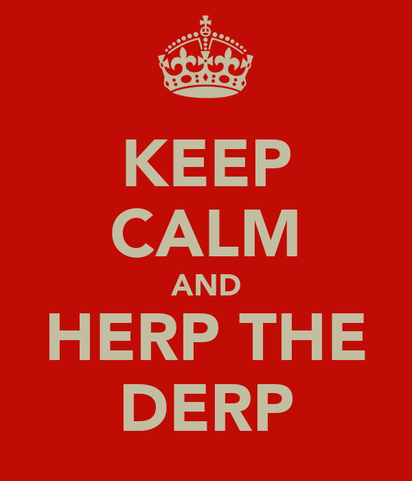 KEEP CALM AND HERP THE DERP